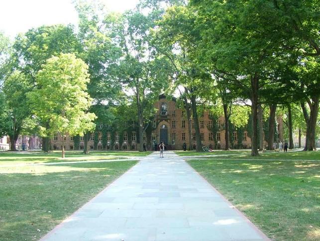 普林斯顿大学图片